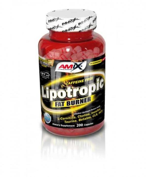 obrázek Amix Lipotropic Fat Burner AM384
